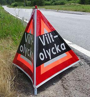 viltolycka_art208